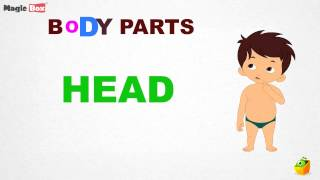 Body Parts Intro - Body Parts - Pre School - Learn Spelling Videos For Kids