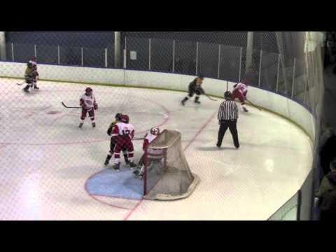 G3 Full Game Red Wings vs Perinton Nov 28 2015