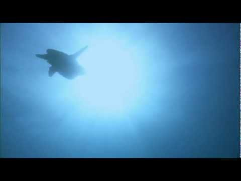 ATC-all around the world (Frayne OCEAN REMIX)