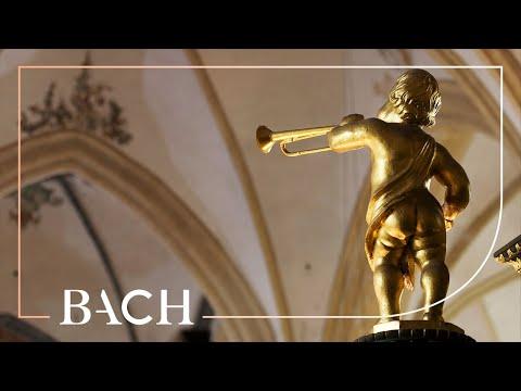 Bach - Herr Gott, nun schleuss den Himmel auf BWV 617 - Van Doeselaar | Netherlands Bach Society