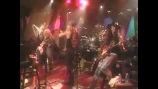 Poison - Unskinny Bop (MTV Unplugged 1990)