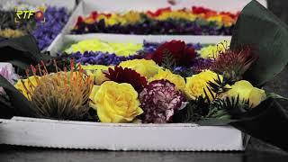 St. Josef in Bad Urach ruft zu Blumenteppichen im Pizzakarton auf