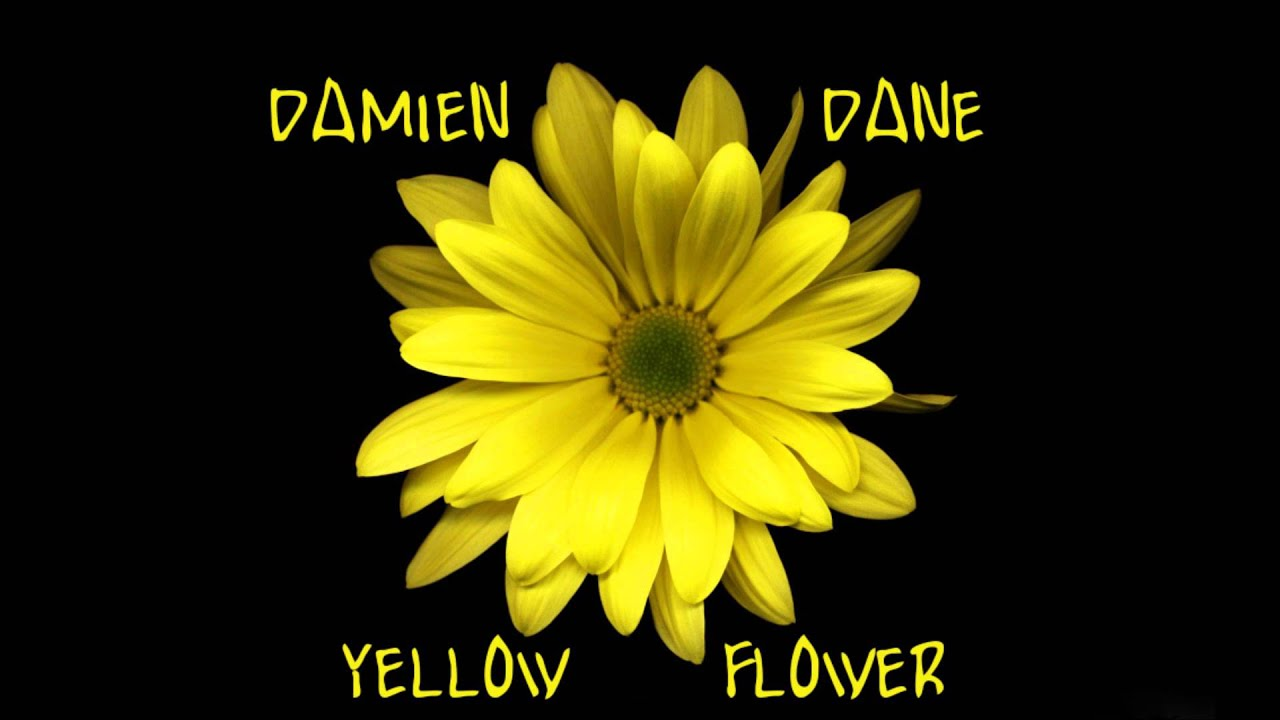 Damien Dane Yellow Flower Kt Tunstall Cover Youtube