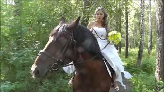 Подарок жениху от невесты поет Елена Лимонова (слова Лимоновой Е.С.) лимонная свадьба