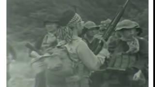NVA側撮影 filmo70DR 16㎜ film.