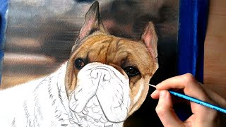 Painting a French Bulldog in Oil Paint