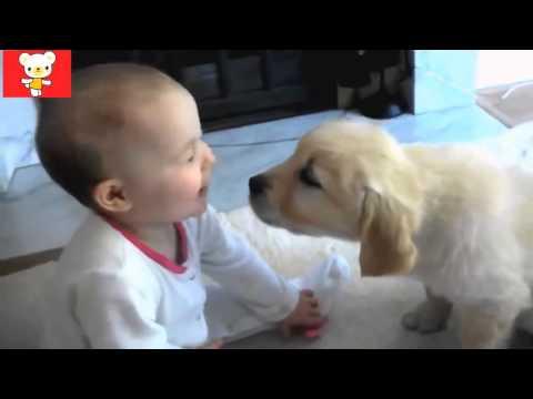 Дети и животные 5 ● Приколы с животными осень 2014 ● Dogs & Cute Babies Compilation ● Part 5