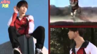 Song: MMPR Season 2 Opening 2 Tribute: 千葉雄大 Chiba Yudai LMAO! I...