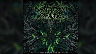 annotations of an autopsy before the throne of infection full album