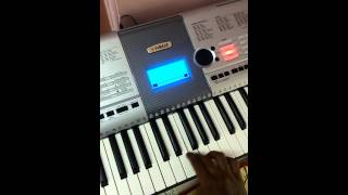 Neevunte naaku chalu yesayya song on keyboard by A