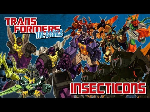 TRANSFORMERS: THE BASICS on the INSECTICONS |