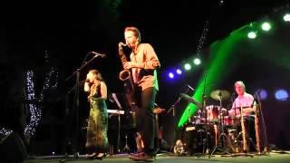 Concierto Roberto Bravo Municipalidad de Macul 2016