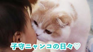 毎日一緒にお昼寝♡ 最高に優しい子守猫さんと弟君の朗らかな毎日♪