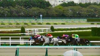 オウケンビリーヴ(ルメール)が差し切り勝ち。ジープルメリア落馬、陽春S。現地映像、阪神競馬場。