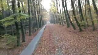 FPV rc plane HD through the woods
