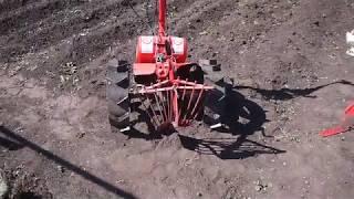Выращивание картофеля с помощью мотоблока