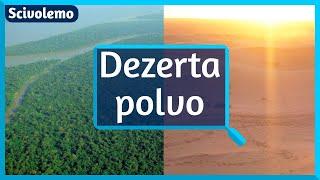 Kiel sahara polvo nutras la amazonan arbaron