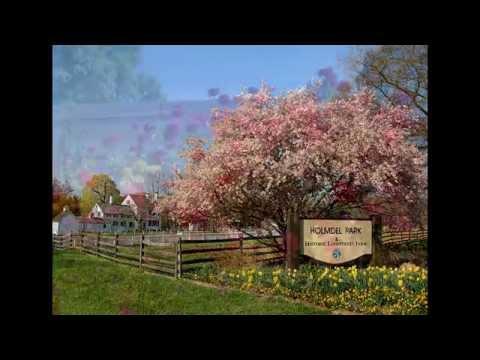 Holmdel Realtor....Looking To Buy Or Sell In Holmdel, NJ?