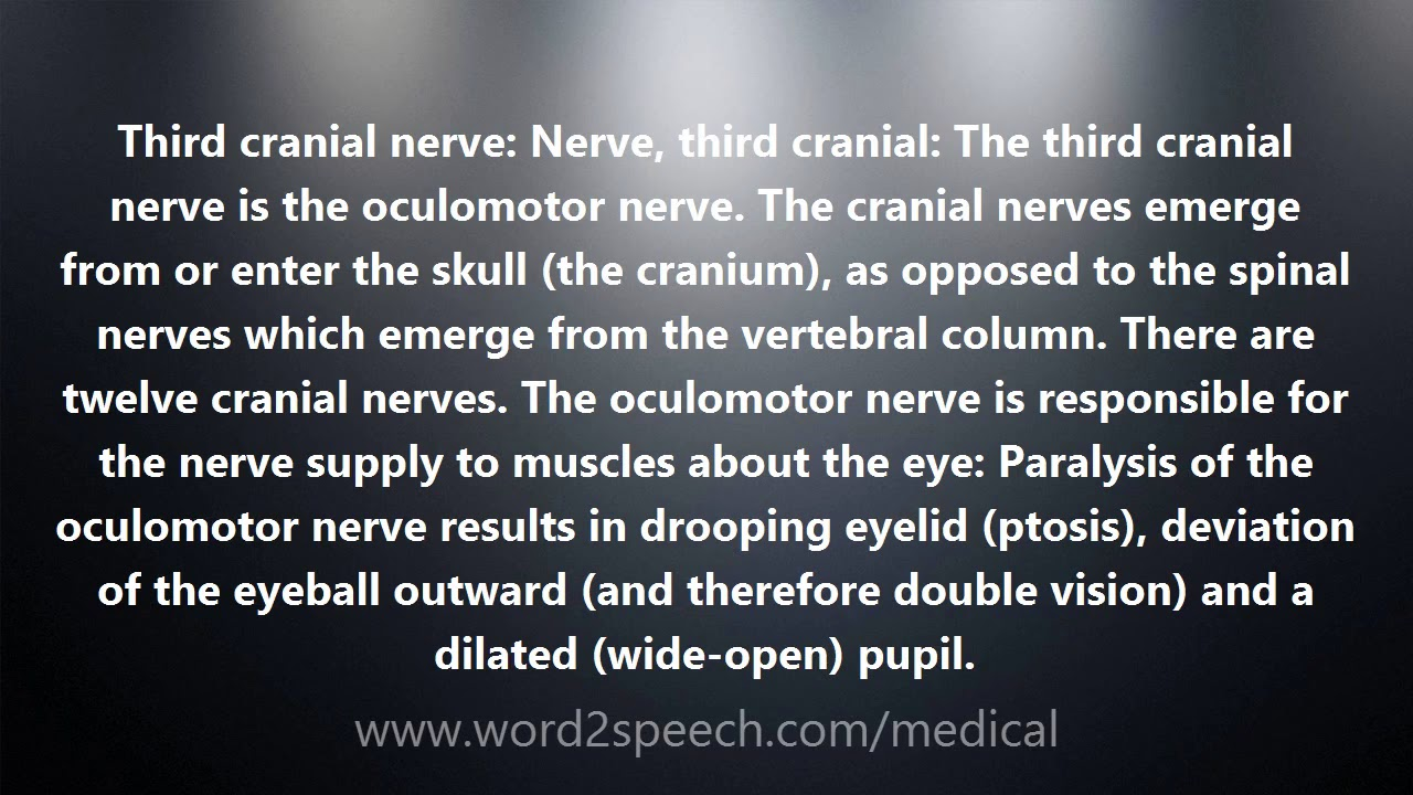 Third Cranial Nerve   Medical Definition And Pronunciation