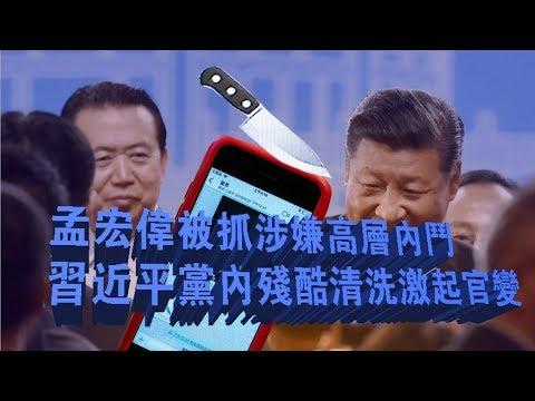 孟宏伟涉嫌高层内斗 习近平党内清洗激起官变