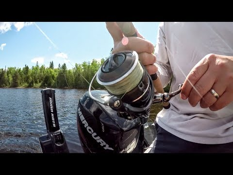 Fishing Line 101: Mono Vs. Fluoro Vs. Braid