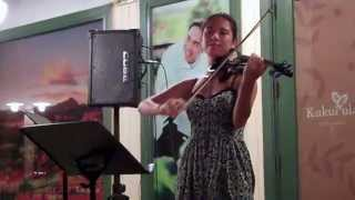 Hallelujah - Jeff Buckley (Violin Cover by Kimberly McDonough)