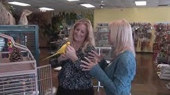 The Animal Rescuers adopted by Pet Planet presents AZ Exotic Bird Rescue