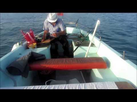 Морская рыбалка на Солнечном Берегу и Несебре. Болгария.