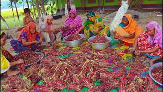 100% Pure VEGAN Recipe - 100 KG Red Long Bean Mixed Vegetables Hodgepodge Cooking By Village Women
