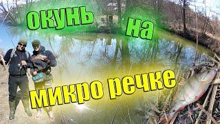 Ловля Крупного Окуня на Микро Речке Сыроватка