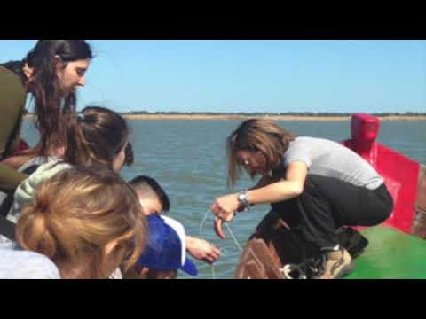 Webinar on Science Outdoor Education: challenges in science teacher training