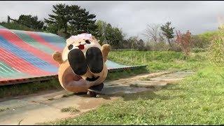 ちぃたん☆欲張り動画セット パート1 Japanese Mascot Fails, Fights & Funny Moments Video