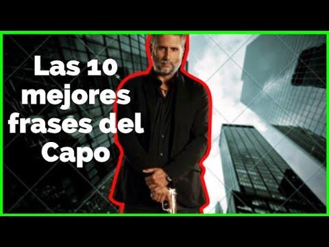 Las 10 Mejores Frases Del Capo Pedro Pablo Leon Jaramillo