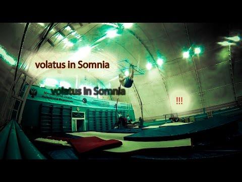 volatus in Somnia (Lingua Latina)