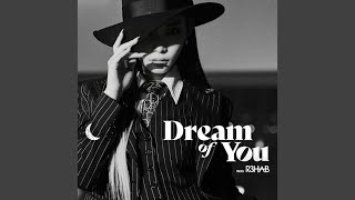 Dream of You (with R3HAB)