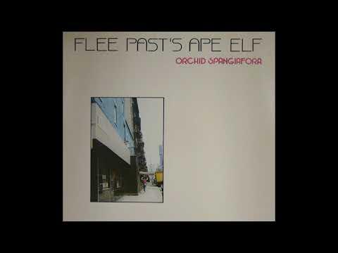 Orchid Spangiafora - Flee Past's Ape Elf (1979)