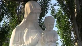 Воронин.Ц.городской р-н. Кривой Рог июнь 2013 год