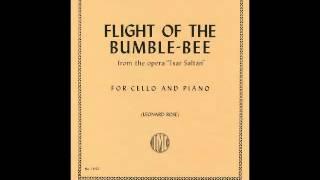 《Flight of the Bumblebee》 『Rimsky-Korsakov』 【のまにまにDTM楽団...