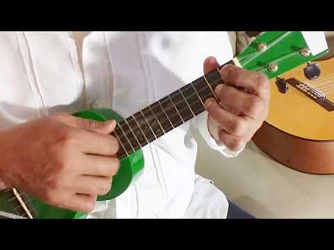 Indonesia Raya - WR Supratman | Ukulele Fingerstyle Cover