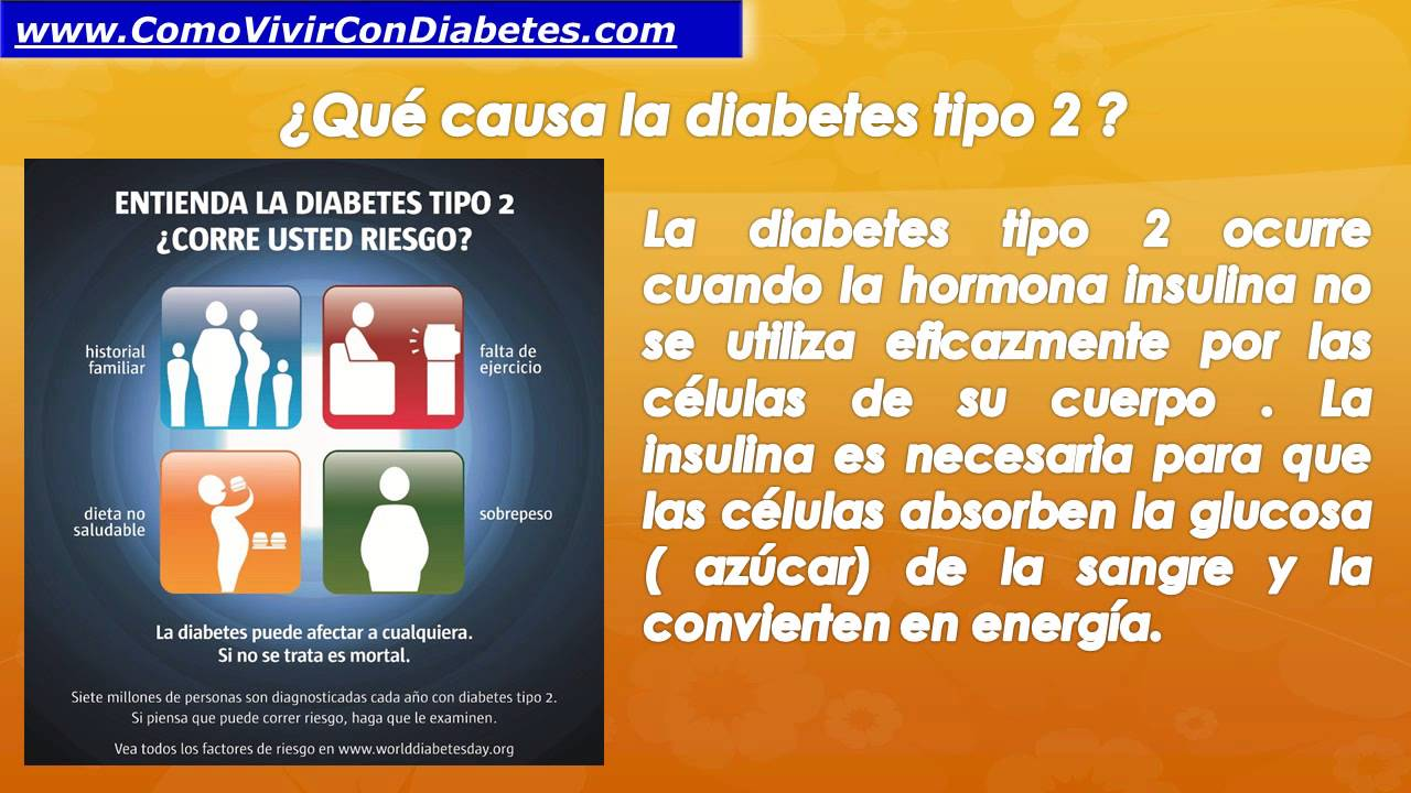 Que es la diabetes mellitus tipo 2 | Diabetes Tipo 2 - YouTube