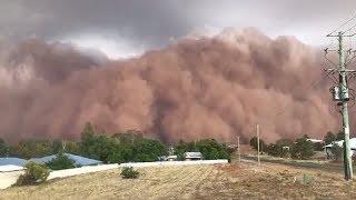 AUSTRALIA Apocalyptic DISTRESS: Fire, Flood, Dust Storm, Hail, Winds, Smog, Drought, Heat 1.20.20