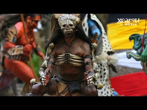 Xcaret Park Tickets - Video