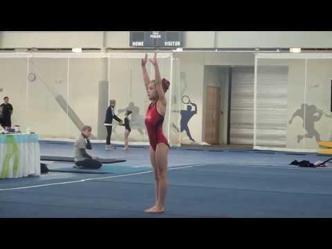 valentine classic gymnastics meet 2013