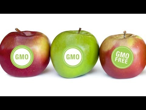Los Angeles Proposes Motion to Ban GMOs