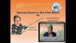 Special Guest: Rob @Defreese Aquariums