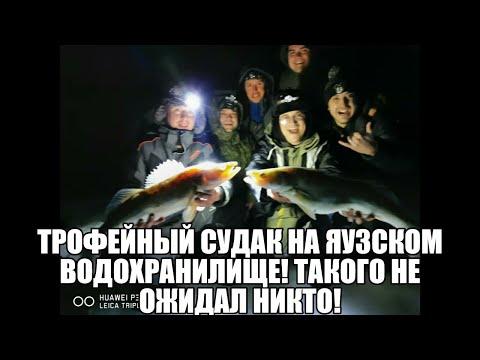 Трофейный судак на Яузском водохранилище, Такого не ожидал никто!