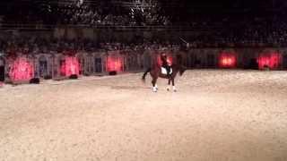 le cadre noir de Saumur aux arènes d'Arles le 27 juillet 2013 - vidéo 1