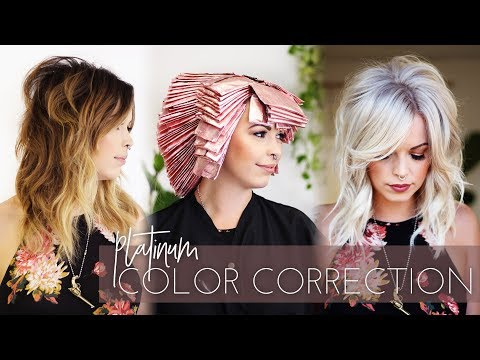 Platinum Blonde Color Correction | Brunette to White in one Appointment! (Full Technique)