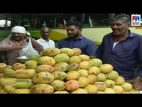 നിപ്പ: പഴവിപണി പ്രതിസന്ധിയിൽ| Kozhikode fruits | Manorama News