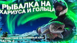 Рыбалка с ночевкой в дикой тундре. Улётный клев во время пурги. Подводные съемки. Часть 2 Рыбий жЫр.